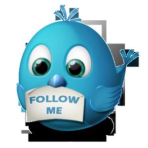 twitter-follow-me-icon