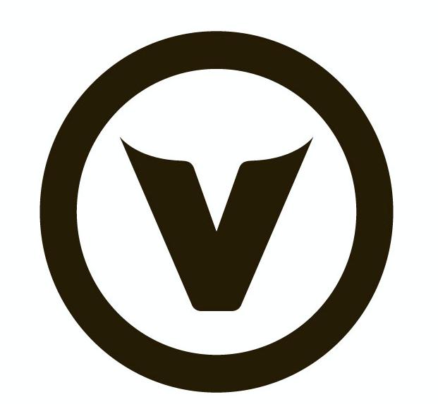 v-media-logo