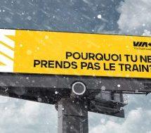 Échos de l'industrie: Les avantages du train, les Alpagas d'Épargne Placements Québec et autres campagnes