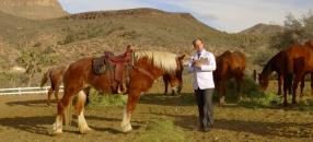 Échos de l'industrie: Jean Coutu au Grand Canyon, MultipleMedia et Groupe Novatech s'associent, nominations chez Ogilvy et DentsuBos