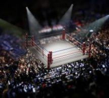 Mayweather contre McGregor: juste une histoire de marketing?