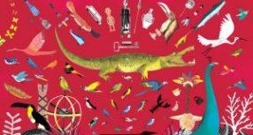 Pointe-à-Callière fait appel à l'illustratrice Josée Bisaillon pour sa nouvelle exposition « Dans la Chambre des merveilles »