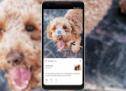 Recherche visuelle : Que nous réserve Google pour 2019au niveau SEO ?