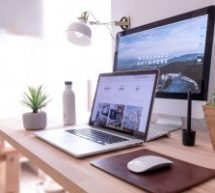 Biophilie au travail : Et si vous ajoutiez des éléments naturels dans vos bureaux pour améliorer le bien-être des employés ?