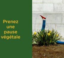 K72 signe la nouvelle campagne «Pause végétale» pour Urban Picnik