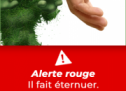 L'arrondissement de Ville-Marie lance une campagne de sensibilisation originale contre l'herbe à poux