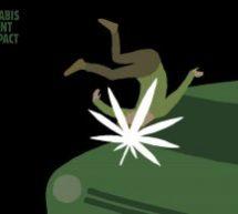 Le cannabis au volant a un impact : Nouvelle campagne de la SAAQ avec lg2