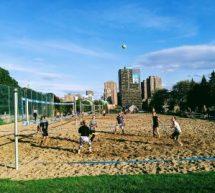 Plus de 2000 $ amassés lors du tournoi de Volleyball de Omnicom Media Group au profit du bec