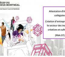 Le cégep du Vieux Montréal fait appel à My Little Big Web pour ses campagnes de publicité en ligne