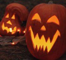 Halloween 2019 : Les Québécois vont dépenser en moyenne 89 $ selon le CQCD