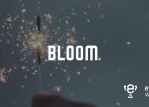 L'agence Bloom, agence boutique numérique de l'annéeaux Ewards 2019