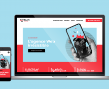 Voyou lance Vilain Cabot, sa nouvelle agence Web