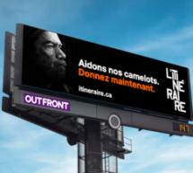 Camden, Outfront et Crackboom font don d'une campagne publicitaire de 100 000 $ à L'Itinéraire pour soutenir les camelots vulnérables
